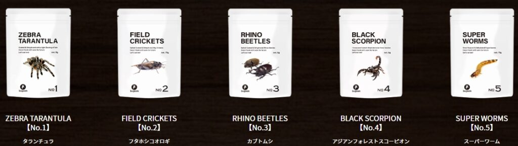 昆虫食の通販